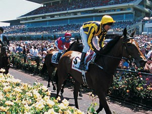 Australian Thoroughbred Racing